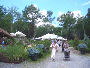 outdoor events berkshire county